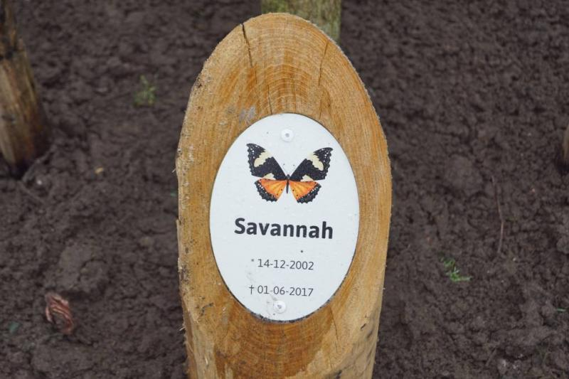 Verdachte zaak Savannah nog verder onderzocht