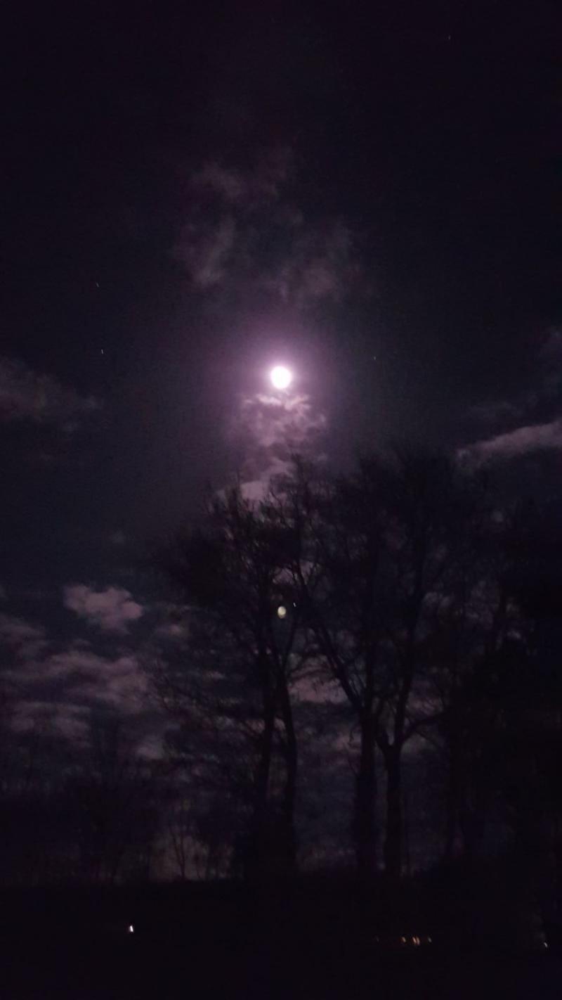 Zie de maan schijnt.... (Foto: Cobra4)