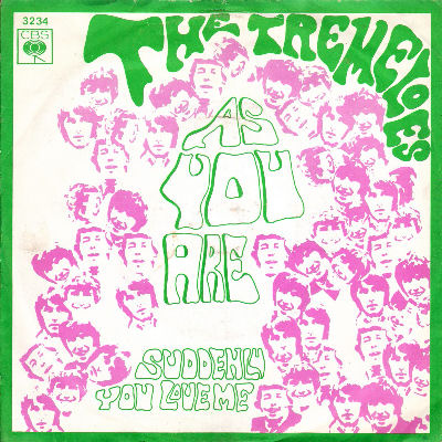 06 The Tremeloes - Suddenly You Love Me
