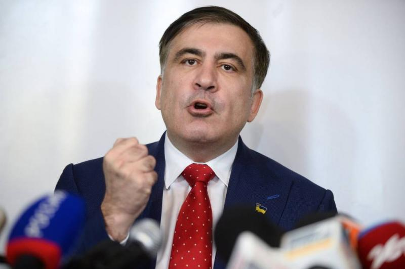 Saakasjvili vestigt zich in Nederland