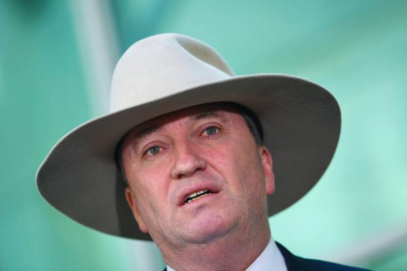 Vicepremier Australië stapt op wegens affaire
