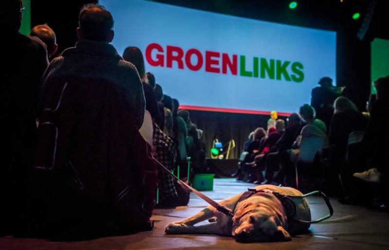 'GroenLinks gaat in 100 plaatsen meebesturen'