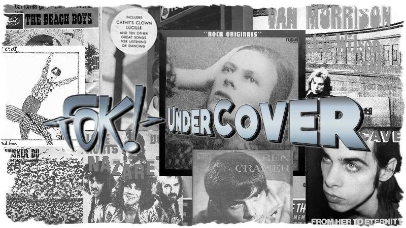 FOK!UnderCover-BANNER