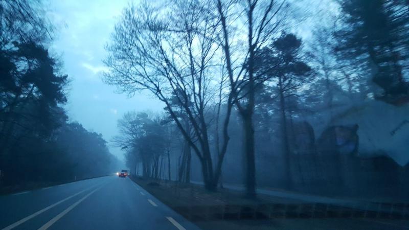 Mistige ochtend  (Foto: Iteejer)