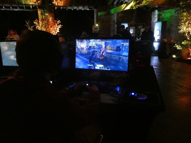 Elder Scrolls Online - Summerset Isles gamen