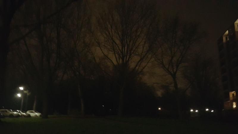 Biesbosch in het donker (Foto: Iteejer)