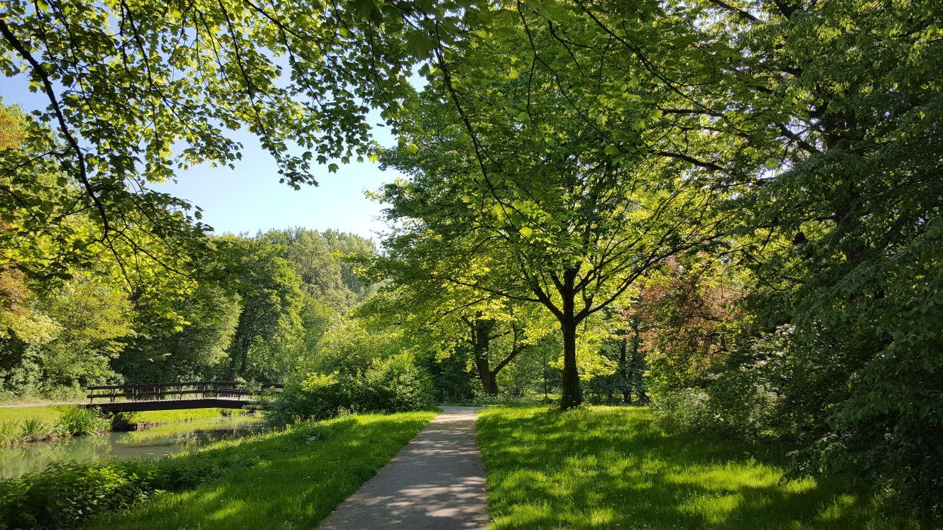 Een parkje in de buurt van Dordrecht (Foto: Iteejer)