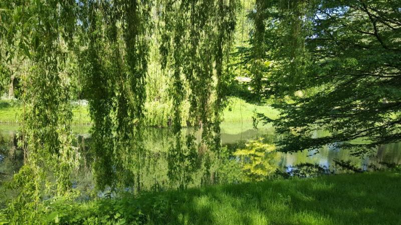 Mooie weerspiegeling (Foto: Iteejer)