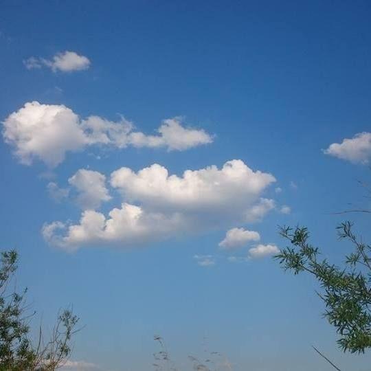Zonnig met wat wolkjes (Foto: Stephan5)