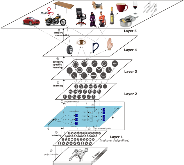 visual-system