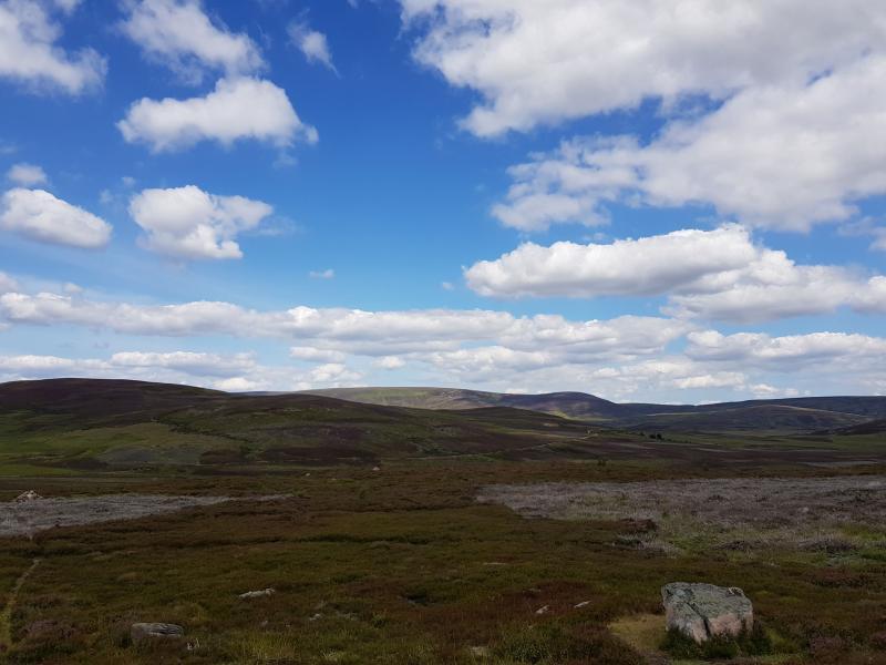 Schotland van Spyla (Foto: spylacopa_68)