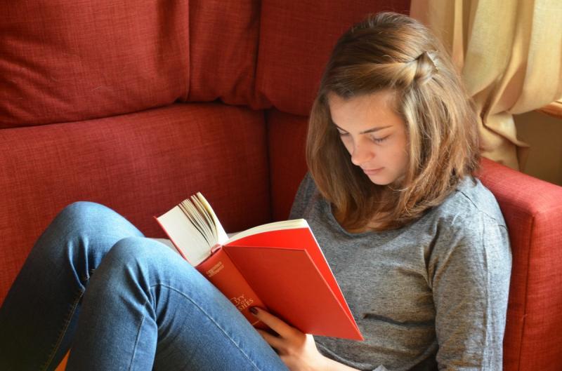 NS Kinderboekenruil op Utrecht en Den Haag Centraal (Foto: Stockfoto PXhere)