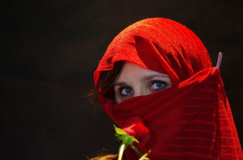 Algerije verbiedt burka en nikab tijdens werktijd (Foto ter illustratie ©pxhere.com)