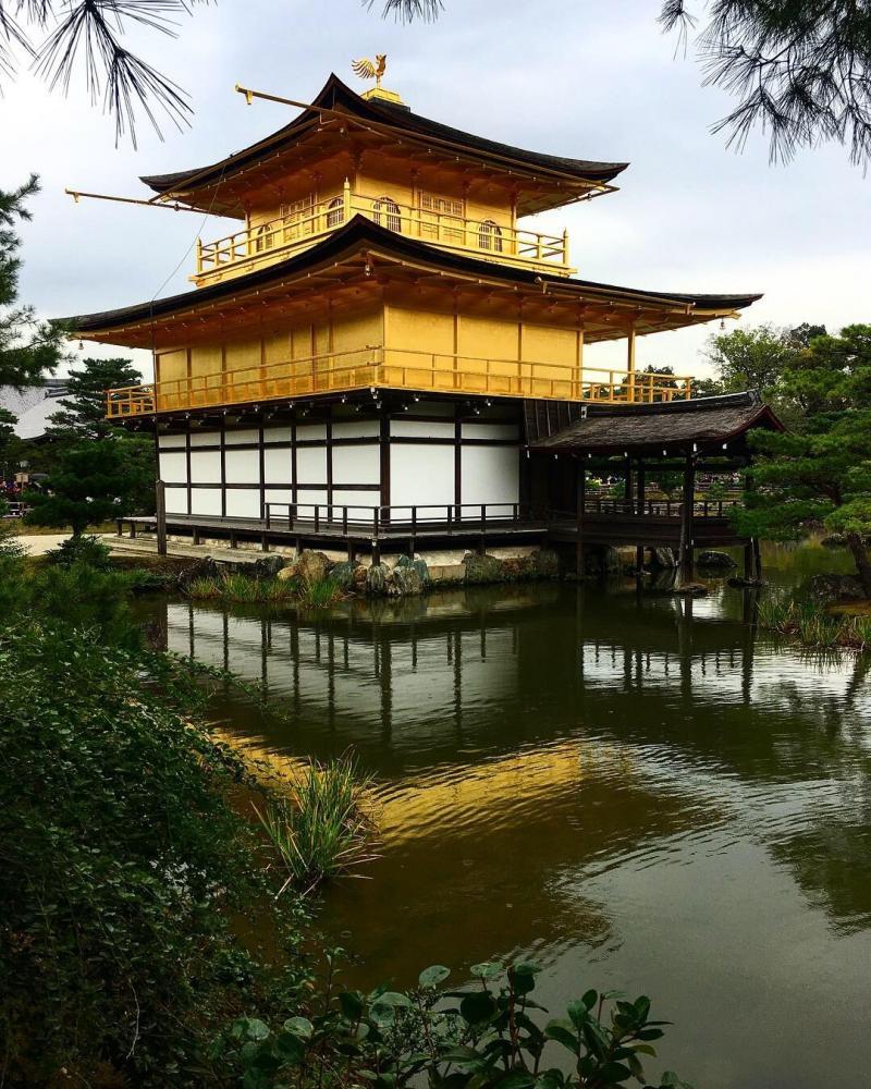 Hoe-die-nie en Semtex zijn in Kioto bij het Gouden paviljoen. Het is er 22 graden!