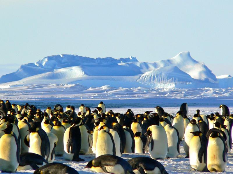 Wintertijd begint met gure noordoostenwind (Foto: Stockfoto PXhere)