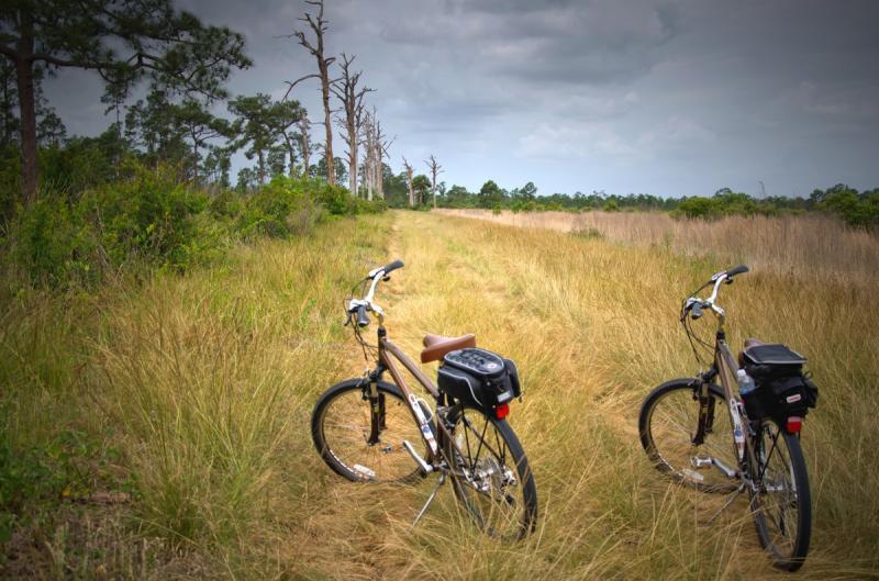 345 miljoen om Nederland op de fiets te krijgen (Foto ter illustratie ©Pxhere)