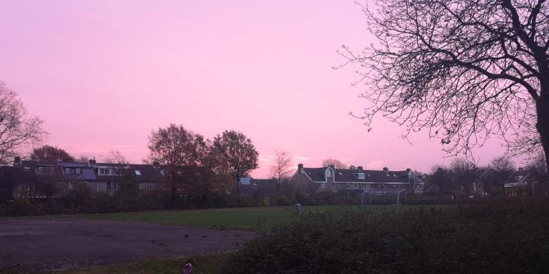 Roze lucht (Foto: DJMO)