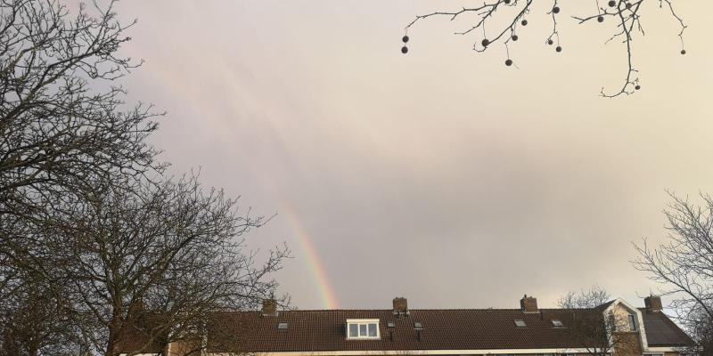 Regenboog in de vroege ochtend. (Foto: DJMO)