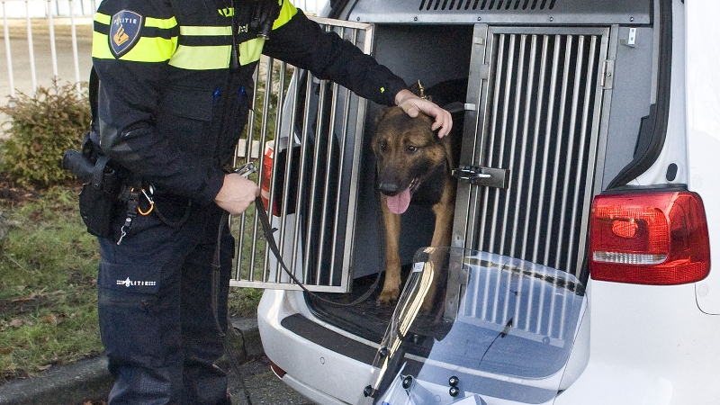 Politiehond grijpt vluchtende autokraker (Foto: Stockfoto politie.nl)