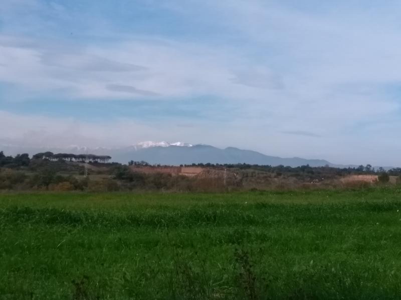 Uitzicht op de besneeuwde bergtoppen vanuit de omgeving van Peralada in noord oost Spanje (Foto: Kroezel)