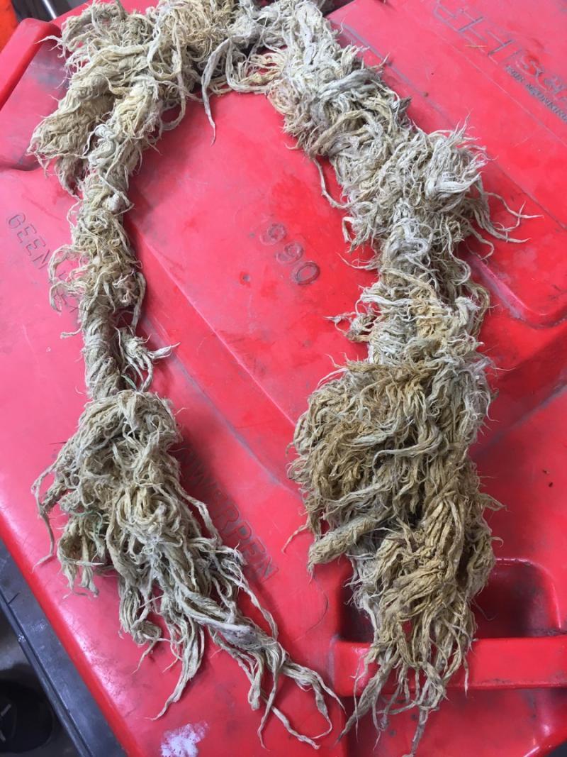 Het riool is bedoeld voor poep en plas, niet voor touw (Foto: Waterschap Scheldestromen)