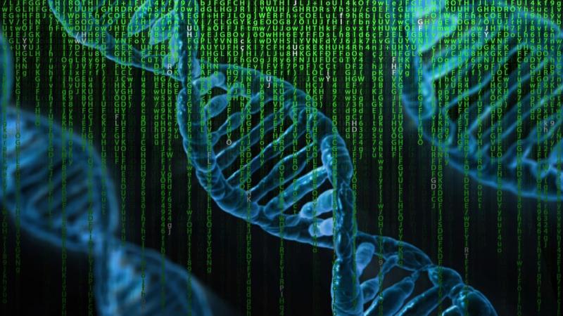 Recherche wil particuliere DNA-databank gaan inzetten (Foto ter illustratie: Pixabay)