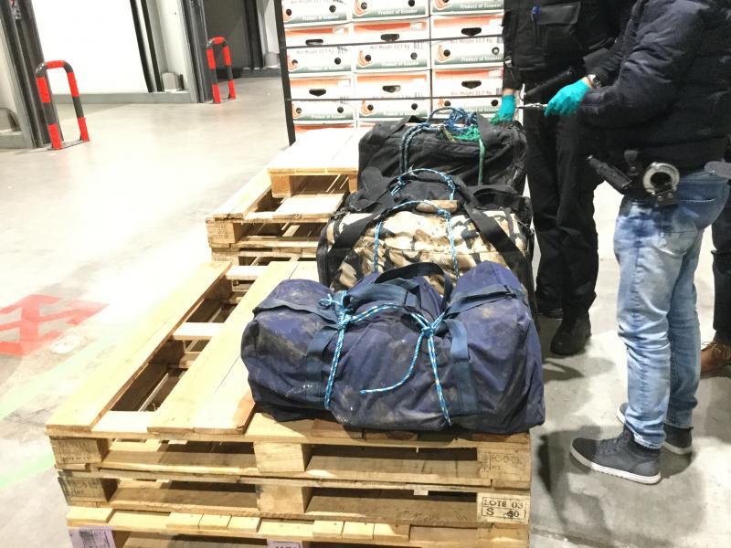 Douane vindt 124 kilo cocaïne tussen bakbananen (Foto: FIOD)