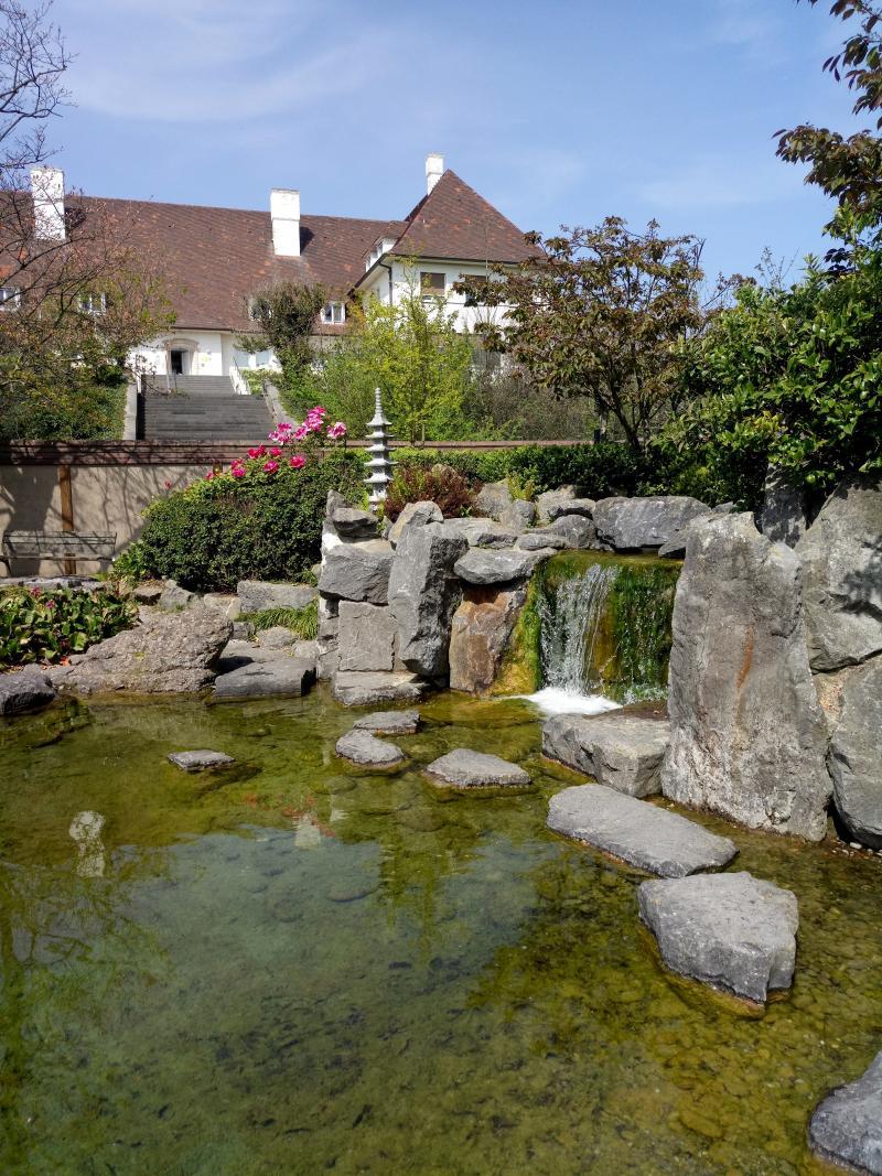 bazbo bezocht de Japanse tuin in Oostende