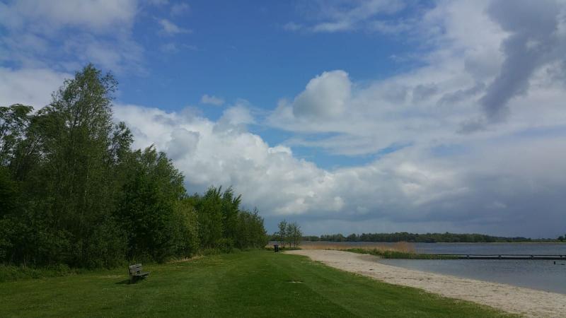 Natuurgebied Het Twiske (Foto: Interpretatie)