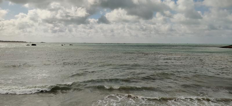 Langs het strand (Foto: Static)