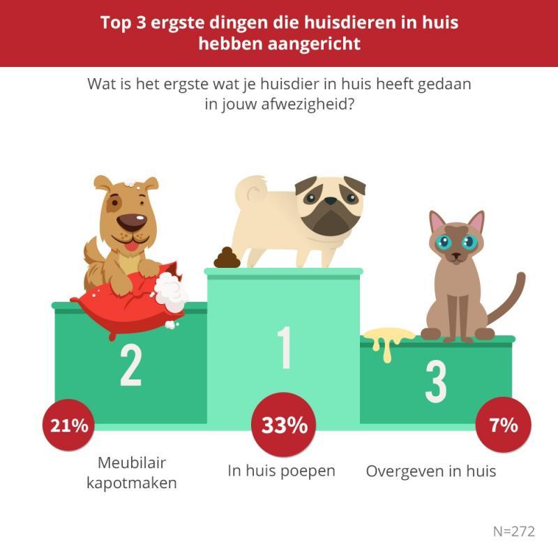 De top 3 van huisdier-ergernissen