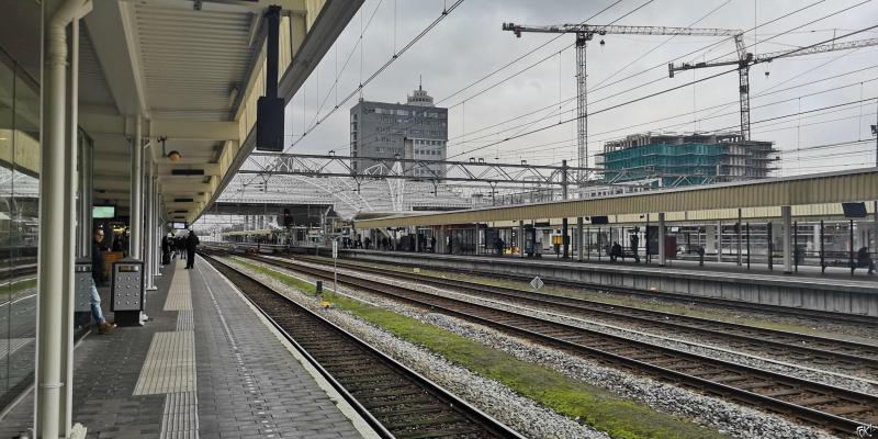 Het spoor bij station Leiden  (Foto: FOK!)