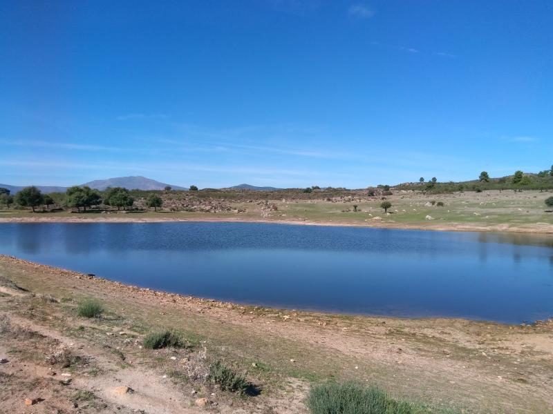 Kroezel moest er ver voor reizen, maar ze heeft de zon gevonden. Hij is in Villasbuenas de Gata (Extremadura, Spanje)