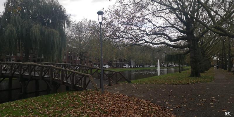 Herfst in het park (Foto: FOK!)