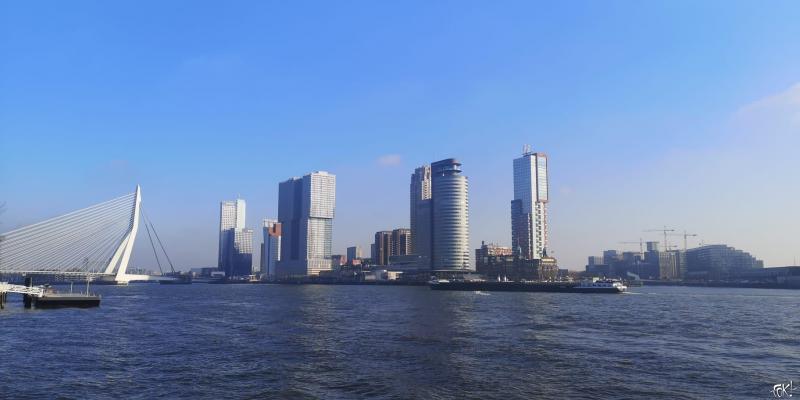 Skyline Rotterdam (Foto: FOK!)