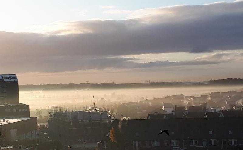mooie mistfoto van maandagmorgen; op de achtergrond de bossen van Woensdrecht. (Foto: Maily)