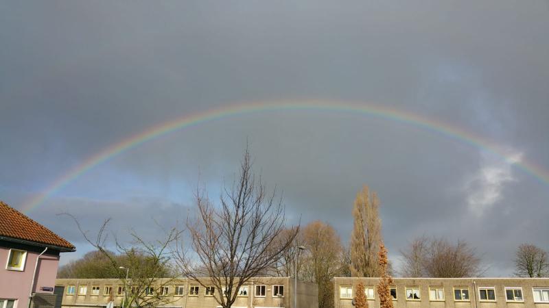 Regenboog in Amsterdam (Foto: Interpretatie)