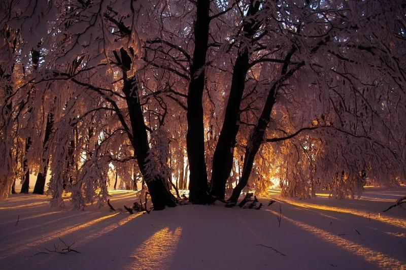 Sneeuwfoto van Scherpschutter. Alweer even geleden. Dit zit er voorlopig niet in.