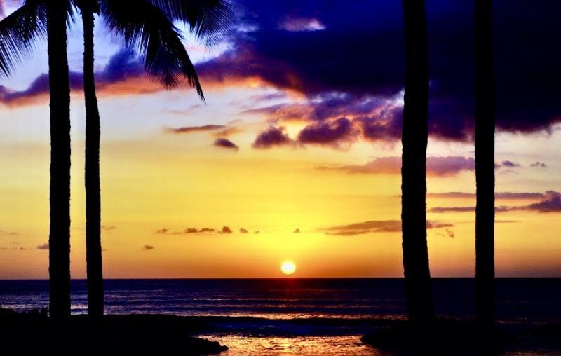 Een bekende van me is in Hawai. Deze foto stuurde hij me een paar dagen geleden.