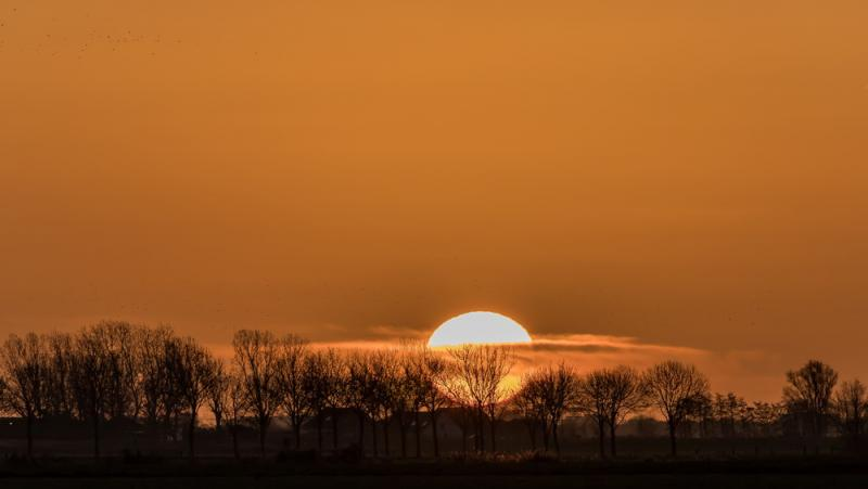 De polder bij Eemnes bij zonsopkomst (Foto: Klapmongeaul)