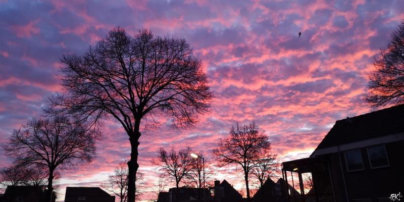 Mooie ochtendlucht  (Foto: DJMO)