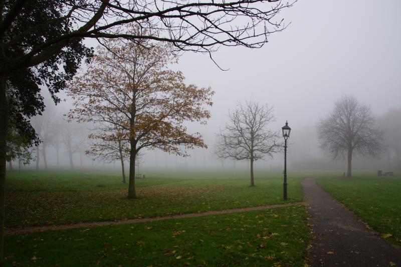 Mist in Zeeland (Foto: Scherpschutter)