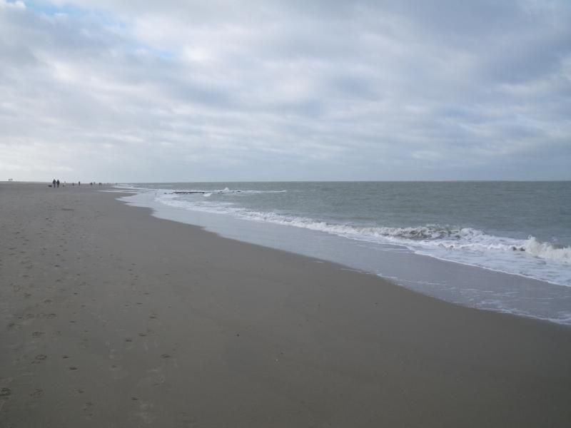 Het strand van Scharrendijke, afgelopen zondag! (Foto: Scherpschutter)