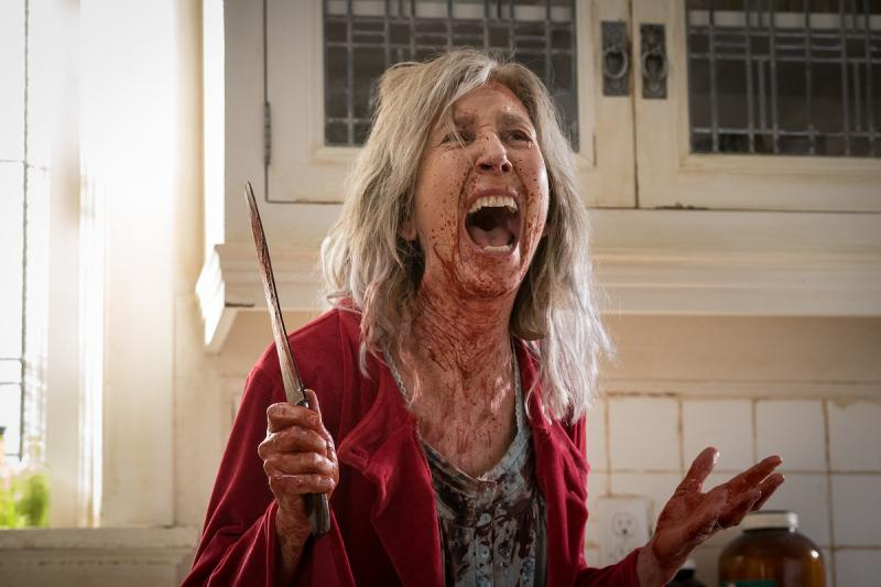 The Grudge: Lin Shaye
