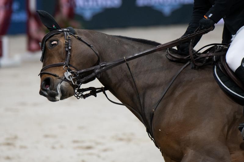 Springen, paard wordt hardhandig aan het bit getrokken, oog draait weg van de pijn (Foto: Dier&Recht)