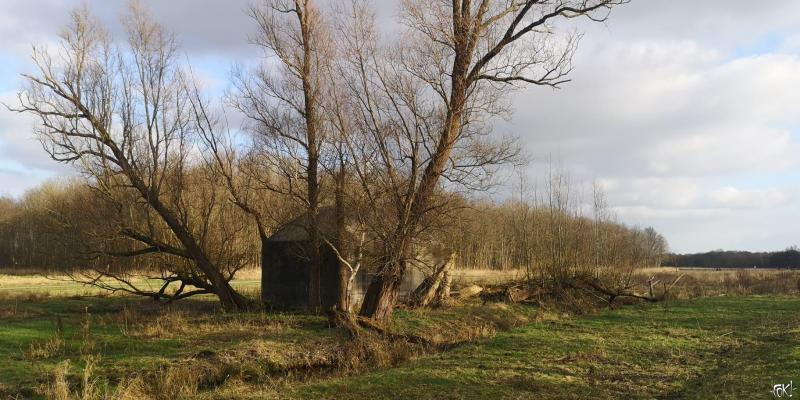 Westerborkpad - Etappe 4 (Foto: FOK!)