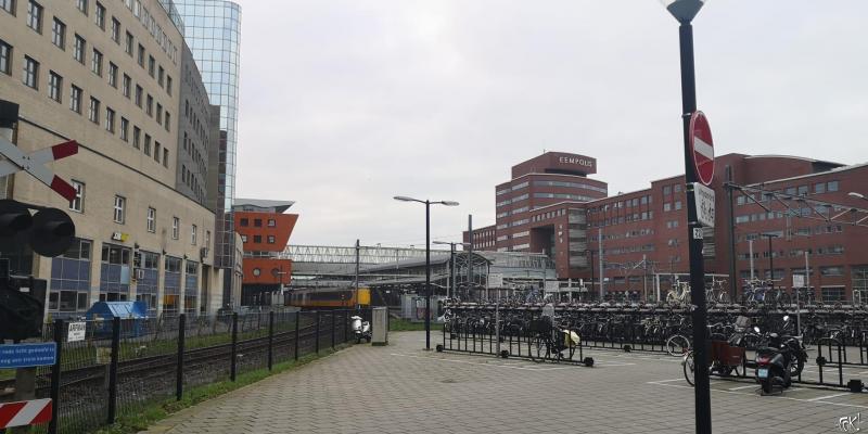 Westerborkpad - etappe 8 (17) (Foto: FOK!)