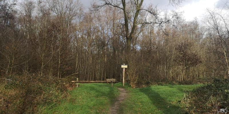 Westerborkpad - etappe 11 (9)  (Foto: FOK!)