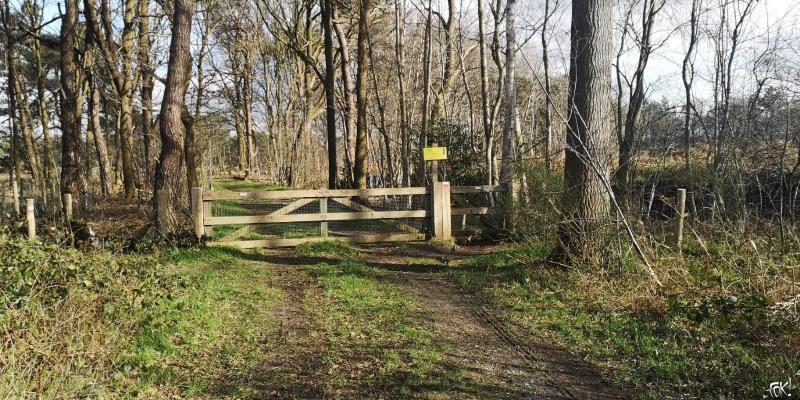 Westerborkpad - etappe 11 (15)  (Foto: FOK!)