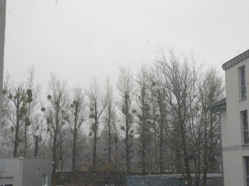 Sneeuw in Berlijn (Foto: vriend van qltel)